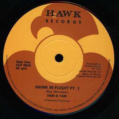 Ram_tam_hawk_in_flight_pt1